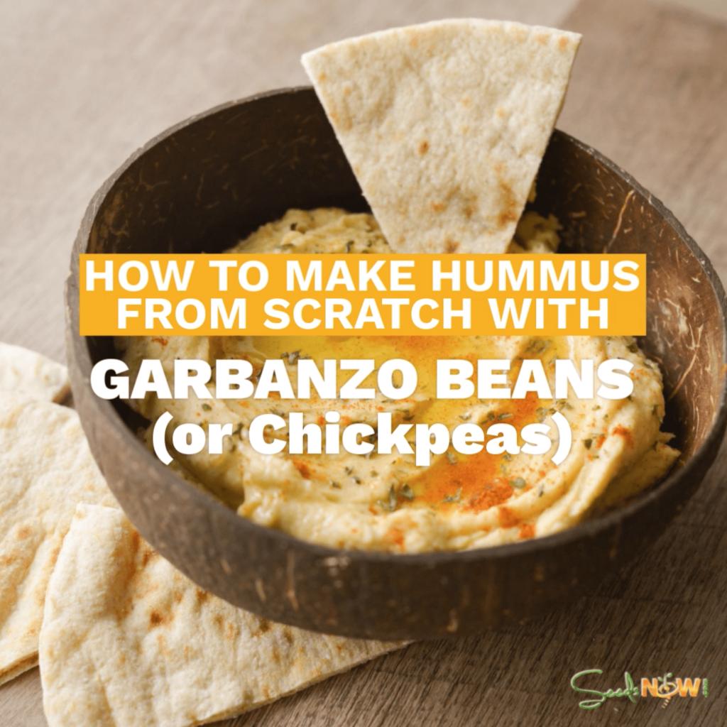 ¡Así es como haces la mejor salsa de hummus!  Receta de bricolaje