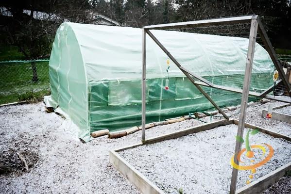 """¡Cómo construir una """"casa de aro"""" para su jardinería de otoño e invierno!"""