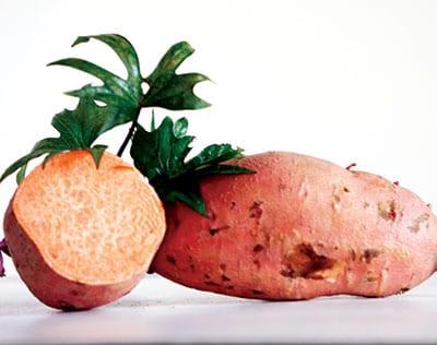 ginseng de batata (tiras para plantar en primavera)