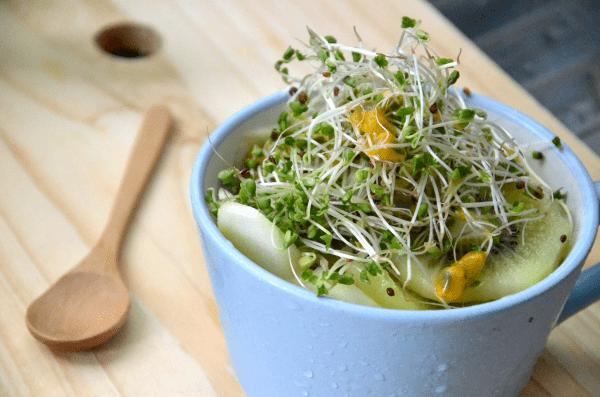 ¿Cómo puedo cultivar SPROUTS y MICRO-GREENS en un yate de vela Liveaboard?