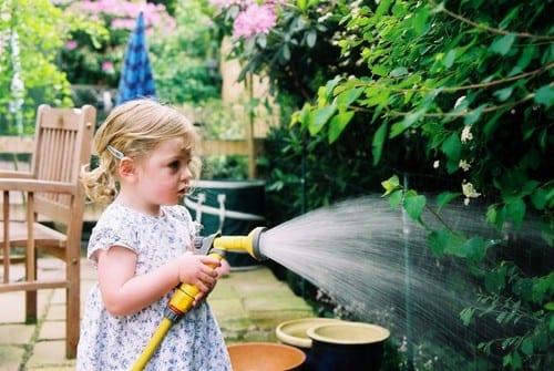 How Often Should You Water the Garden?