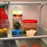 ¿Deben almacenarse las semillas recolectadas en el refrigerador o congelador?