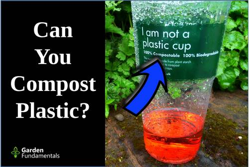 Is Compostable Plastic Really Compostable?