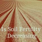 ¿Está disminuyendo la fertilidad del suelo?  - Mitos del jardín