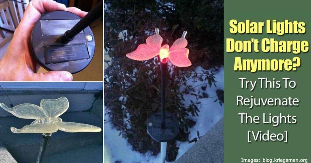 solar-lights-rejuvenate-93020152392