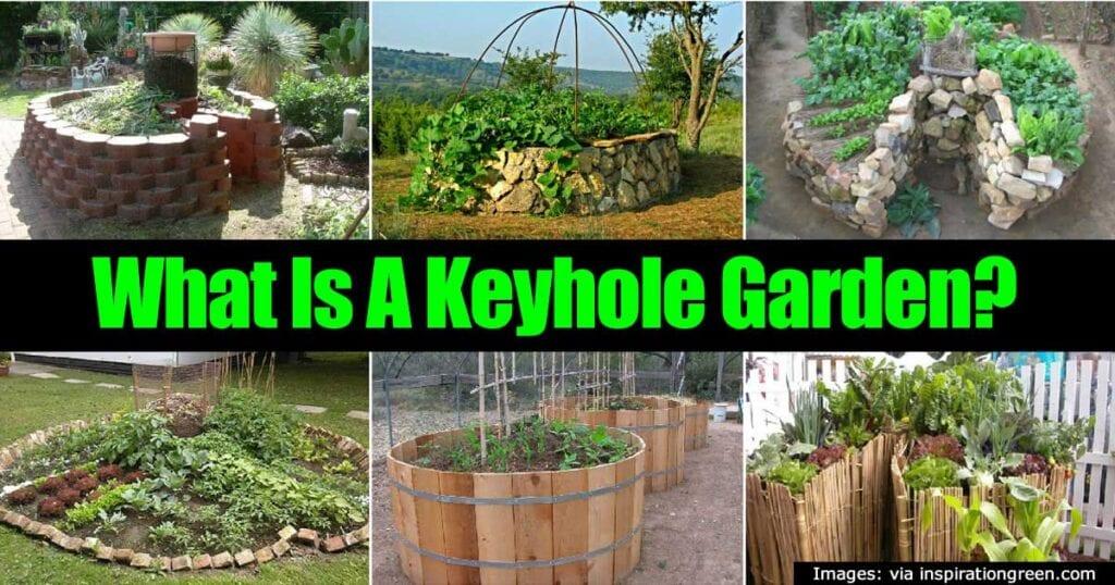 keyhole-garden-22820151223