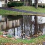 ¿Se acumula agua en su jardín?  ⋆ Gran blog de jardinería