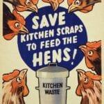 ¿Sin caja de abono?  Prueba el compostaje en zanjas ⋆ Gran blog sobre jardinería