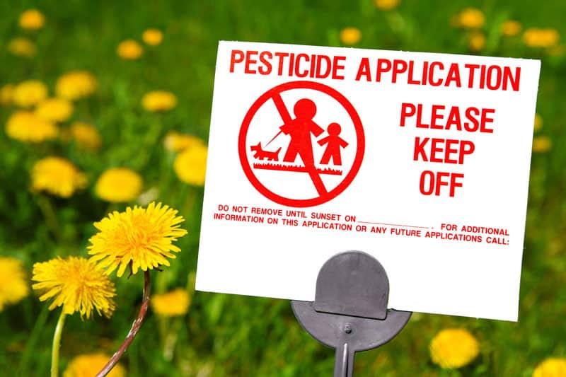 ¿Son seguros los fertilizantes, herbicidas y pesticidas para su césped?  ⋆ Gran blog de jardinería