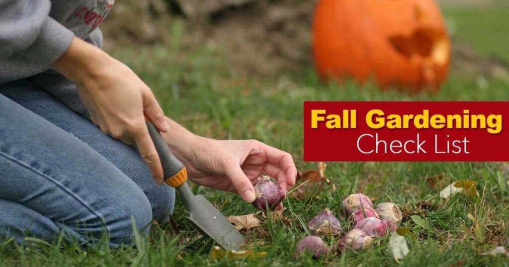 fall gardening ideas checklist