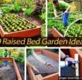 10 ideas de jardín con cama elevada