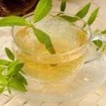 10 plantas que deberían cultivarse para los amantes del té de hierbas