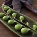 12 verduras fáciles para plantar y cultivar en tu jardín