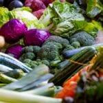 14 verduras de rápido crecimiento |  Blog de jardinería Estiercoles.com