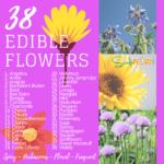 38 flores comestibles para plantar en tu jardín