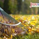 4 sencillos pasos para limpiar la herramienta de jardín de otoño