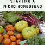 5 Mitos sobre el inicio de una Micro Homestead