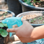 8 formas de deshacerse de las plagas del jardín (¡sin productos químicos!)