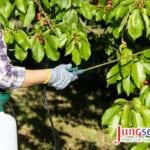 Aceite hortícola para el control de plagas