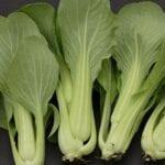 Acerca de las verduras chinas - estiercoles
