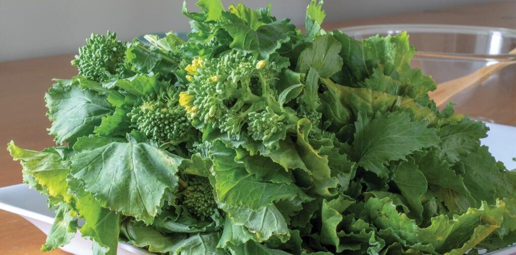 Acerca del brócoli Rapini