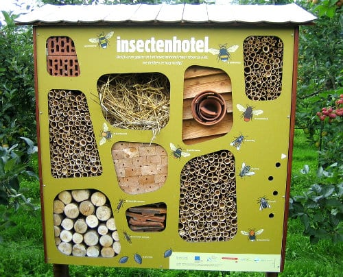 Bee Hotels - Do They Really Work?