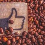 Café en el jardín: ¿es seguro usarlos?