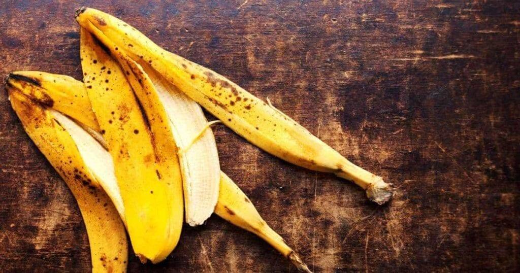Cáscaras de plátano en el jardín.