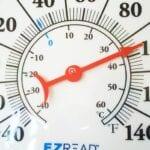Cómo afectan las olas de calor a las plantas del jardín ⋆ Gran blog sobre jardinería