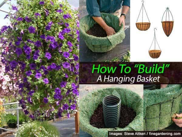 hanging-basket-011514