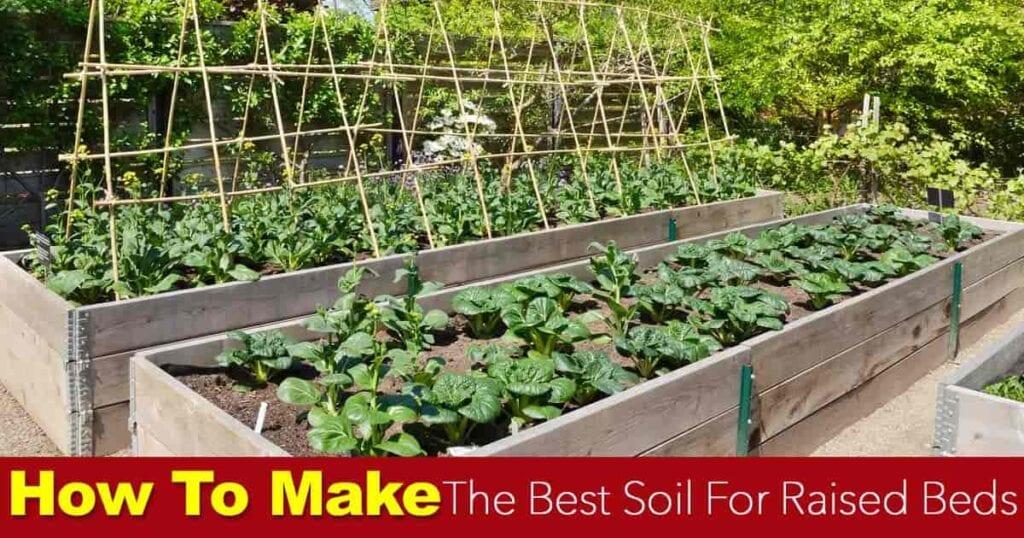 making the best soil for raised gardening beds