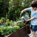 Cómo hacer que los niños se interesen en la jardinería ⋆ Big Blog Of Gardening