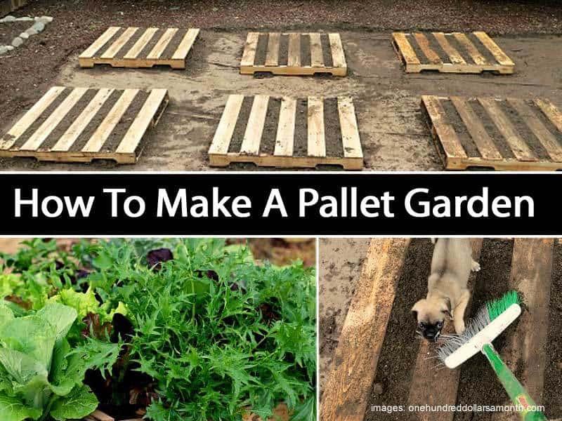 make-pallet-garden-073114
