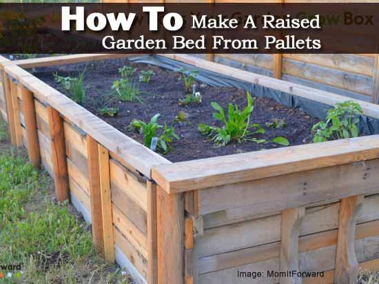 Cómo hacer una cama de jardín elevada con paletas -