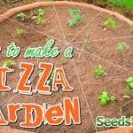 Cómo hacer una pizzería