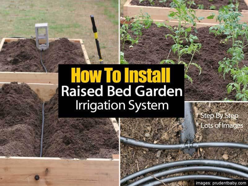 raised-bed-irrigatiion-063014