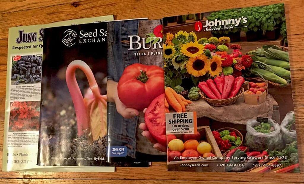 Cómo leer catálogos de semillas ⋆ Gran blog de jardinería