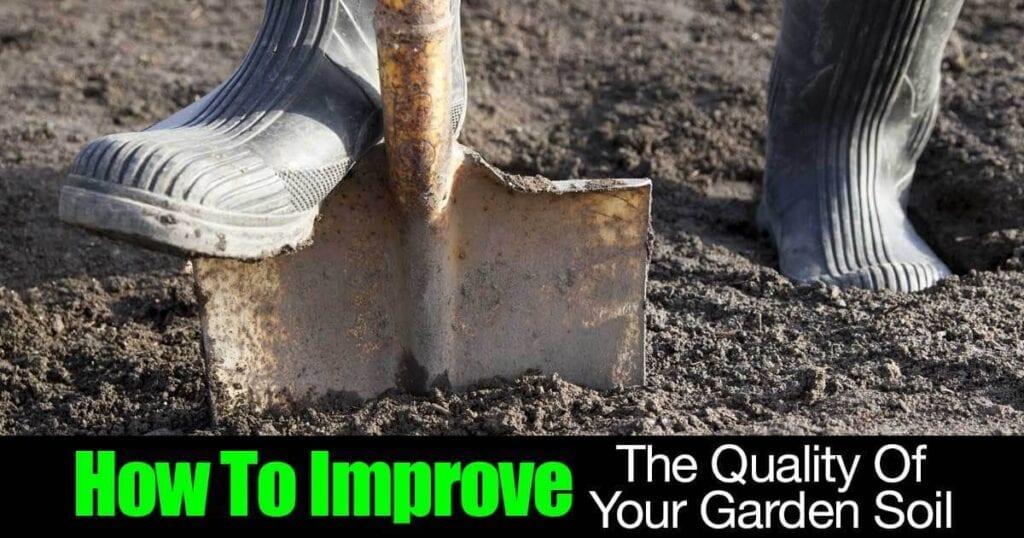 improve-garden-soil-01312016
