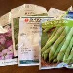 Cómo probar la viabilidad de las semillas de jardín