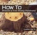 Cómo quitar un tocón de árbol sin dolor -