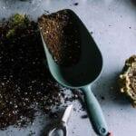 Cómo renovar el suelo de tu antiguo jardín