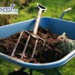 Compostaje de otoño para principiantes |  Blog de jardinería Jung Seed