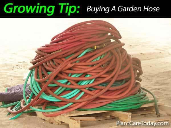 garden-hose-031514