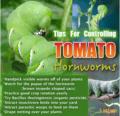Consejos para controlar los gusanos del tomate