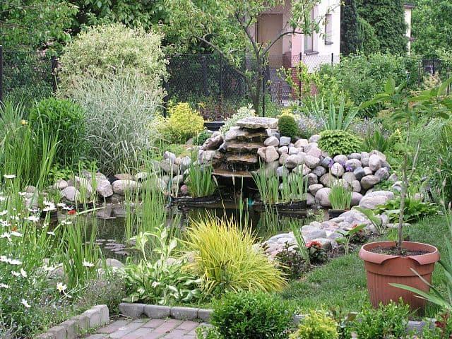 diseño del lago del jardín