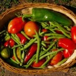 Control de plagas y enfermedades en jardines libres de químicos ⋆ Gran blog sobre jardinería