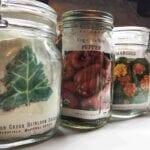 Cuatro razones para invertir en semillas de jardín no transgénicas