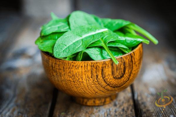 Cultivar espinacas a partir de semillas puede ser un poco complicado.  ¡Este es el por qué!