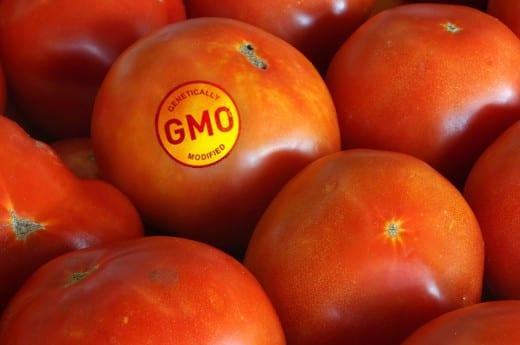 Definición oficial de OMG ⋆ Gran blog de jardinería