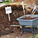 Demasiado abono, ¿está envenenando su jardín?
